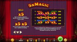 5x Magic Wild