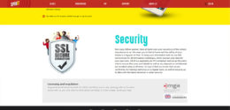 SpiniT Casino Security