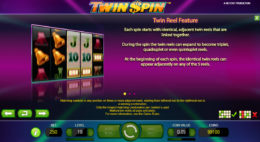 Twin Spin Bonus