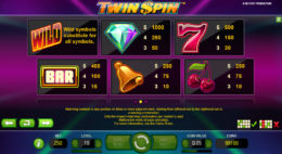 Twin Spin Payouts