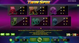 Twin Spin Symbols